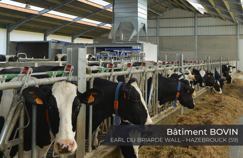batiment-bovin-earl-du-briarde-wall-hazebrouck-2